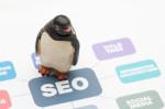 Рост трафика из Google после обновления Пингвина