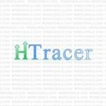 Как правильно установить HTracer на Wordpress