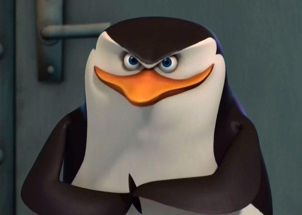 Google Penguin-3.0